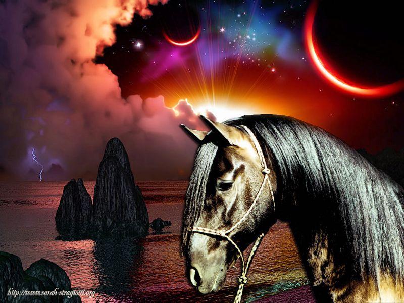 chevaux014.jpg